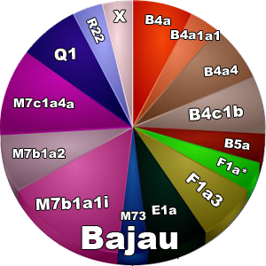 mtDNA suku Bajau